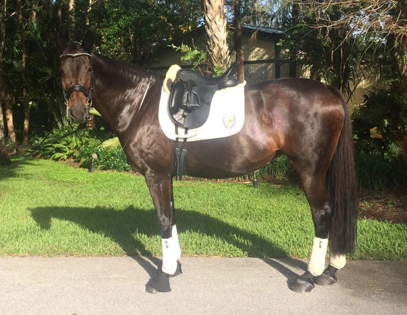 Beatrix ready to return to work.
