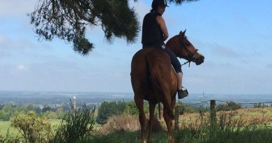New group to support and study female equestrian health