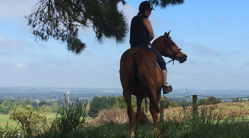 Female riders look to live on entering the Equus caballus Gender bias is rife inward equestrianism – in addition to horses are affected too