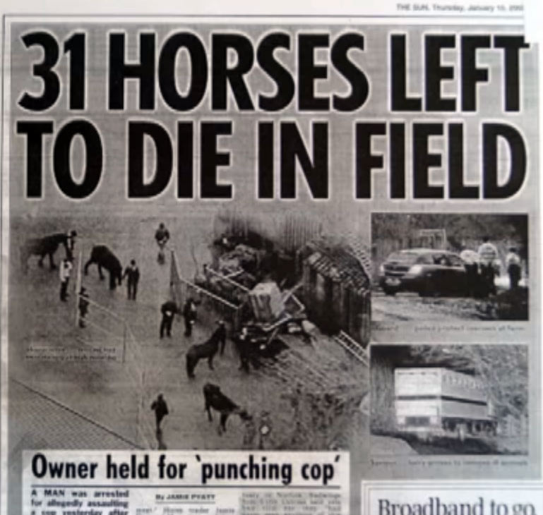 The Spindles Farm horse welfare case shocked Britain - and the world.