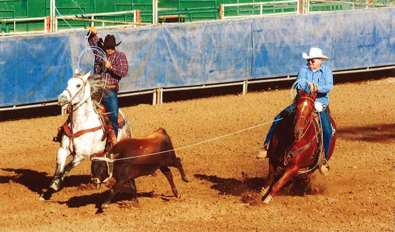John, right, ridden by owner Doug Parker, overcame botulism poisoning to qualify for the World Series of Team Roping.