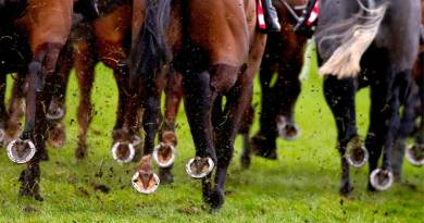 Do all racehorses compete in a direction that suits them?