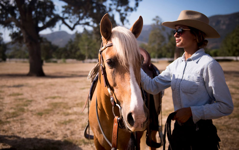 Cochise and Abby Followwill prepare for a morning ride at El Campeon Farms. The duo are part of the farm's marketing effort, traveling to horse shows to promote the breed.