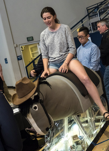An attendee at Rice University's George R. Brown Engineering Design Showcase takes a ride on Stewie, a student-designed mechanical hippotherapy horse designed to make equine-assisted therapy available to patients without access to a real horse.