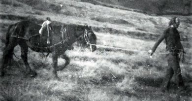 """Fell pony pioneer honoured for his dedication to """"hardy, tough little pony"""""""