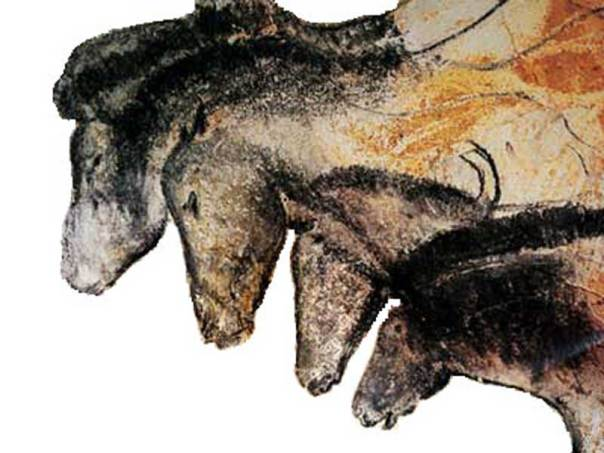 Horses depicted in the Chauvet Cave in France. This particular rendering is said to date from 31,000 years ago. Photo: Public Domain via Wikimedia Commons