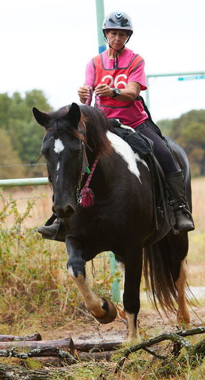 Draft horses are certainly not known for their speed. But properly conditioned, any healthy, sound, good-minded horse can compete.