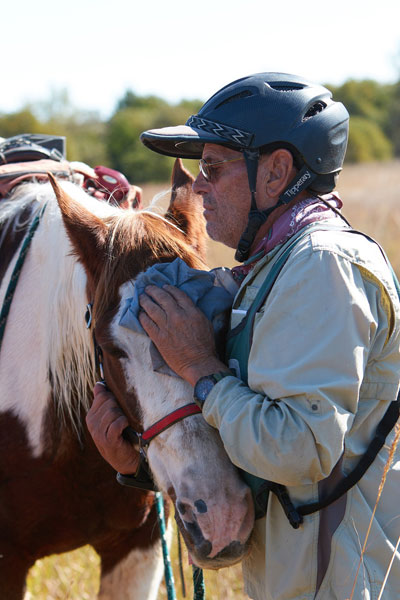At a vet check for Pulse and Respiration, riders do what is best for their particular horses to help them relax.