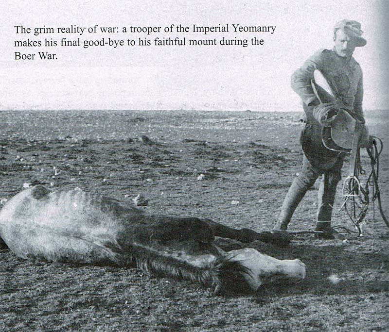 The grim reality of war: A trooper of the Inperial Yeomanry makes his final goodbye to his faithful mount during the Boer War.