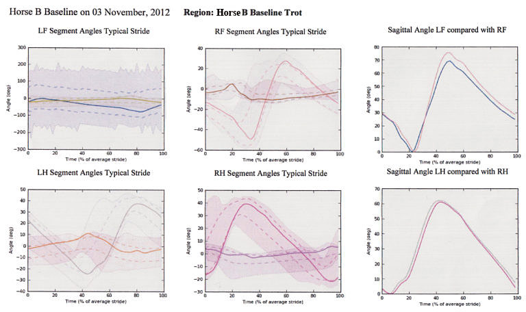 The charts above and below are printouts from the Pegasus Gait Analysis Software used in the experiment to determine the effect on various gaits with different saddles (western, fitted English, treeless and non-adjusted English saddles (Without specific comment as to what the findings represent).