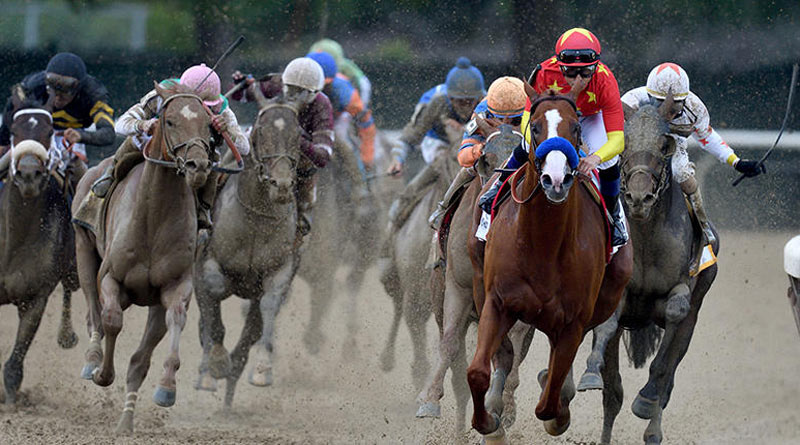 Justify led from start to finish to take out the Belmont Stakes and become racing's 13th Triple Crown winner at the weekend.