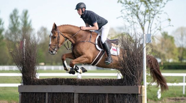 Master Class Ramiro sold for €49,000 at the Goresbridge Tattersalls Ireland Select Event Horse Sale on Thursday.
