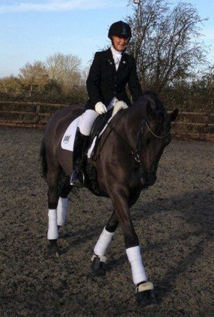Penny Pollard owns three dressage horses and competes at elementary level with Holme Grove Bernini.