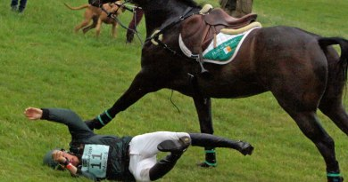Price no guarantee of greater safety with horse riding helmets, study findings suggest