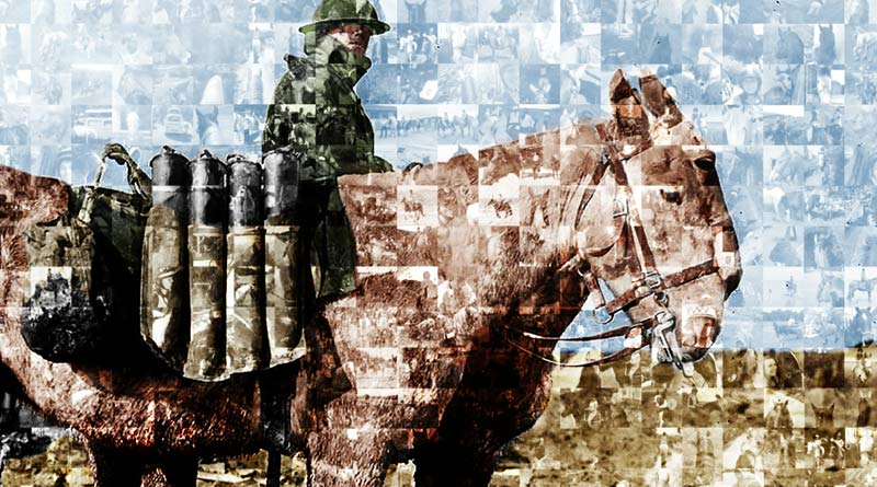 Brooke's photo mosiac celebration war horses has been created with images from supporters.