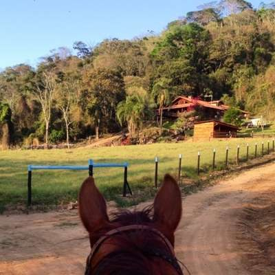 After carrying Filipe across North, Central and South America Filipe's horse, Bruiser, sees the Leite family home and the pasture where he and his equine comrades will enjoy the rest of their lives.