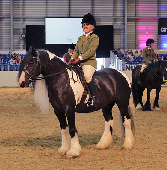 Frodo and World Horse Welfare Groom Nicolle Walmsley at Equifest, where Frodo was crowned National Rescue Pony Champion.