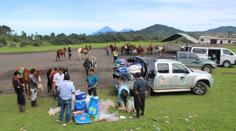 Brooke and its partners helped deliver supplies to equines in need after the Fuego volcano eruptions.