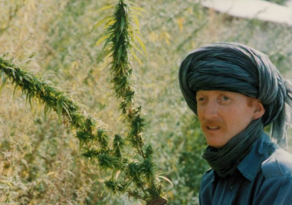 The author CuChullaine O'Reilly passes cannabis growing wild in Pakistan during an 1100-mile ride through the country in the early 1980s.