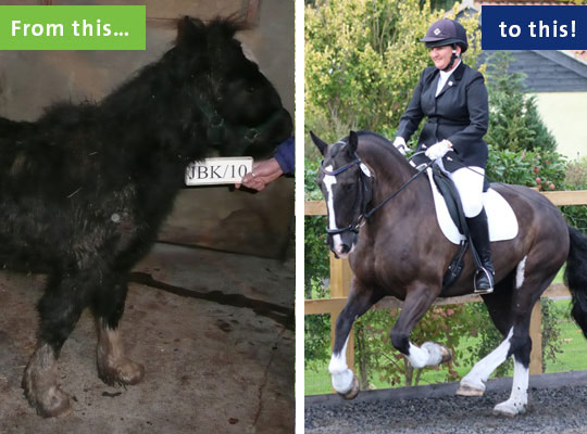 Spike's transformation has been amazing, and the eight-year-old has a very bright future ahead of him.