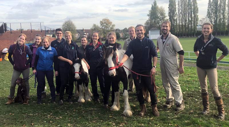 BEVA Trust veterinary volunteers recently reached the milestone of 1000 horses helping during clinics in Britain.