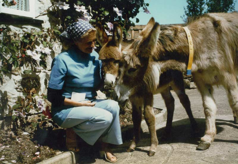 Dr Svendsen with Charlie girl and her foal, Angel; the 1269th arrival at The Donkey Sanctuary.