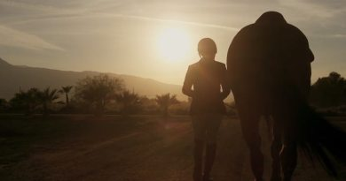 "Unique horse-human relationship explored in short movie ""Desert Flight"""