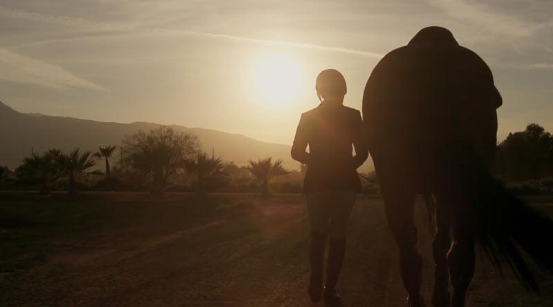 A scene from Desert Flight.