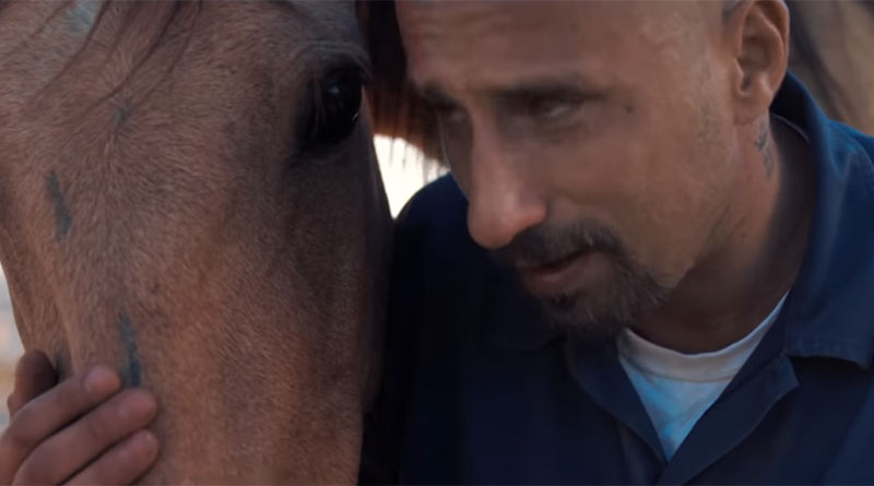 Belgian actor Matthias Schoenaerts plays Roman in The Mustang.