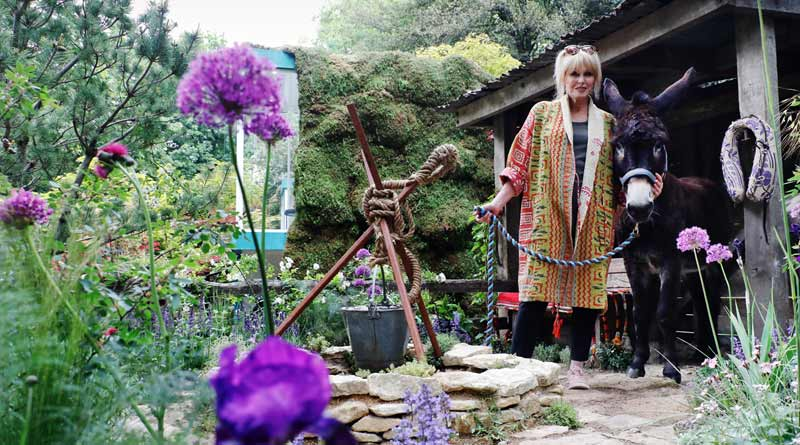 Joanna Lumley with Harley at The Donkey Sanctuary's 'Donkeys Matter' garden at the RHS Chelsea Flower Show in London.
