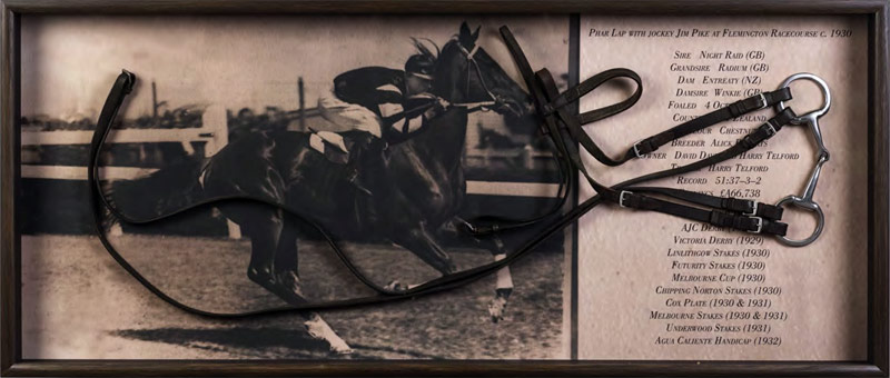 A couplet of shoes in 1 trial worn yesteryear the famous racehorse Phar Lap has fetched  Phar Lap's shoes, bridle fetch $A34,000 at auction