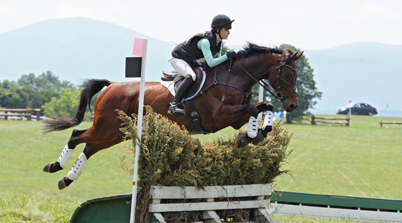 Two riders, one horse die in eventing accidents - Horsetalk