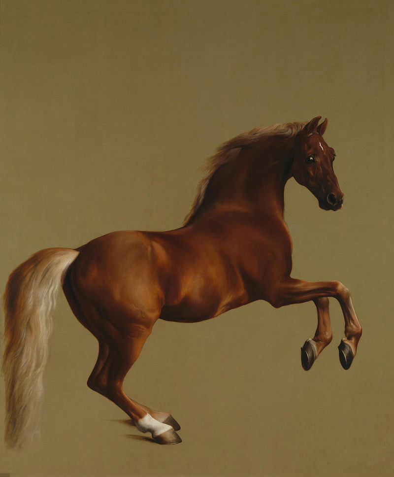 Whistlejacket, by George Stubbs, was painted in about 1762 and was about a life-sized portrayal of the Marquess of Rockingham'sracehorse.