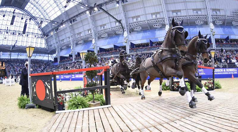 London's Olympia horse show goes even