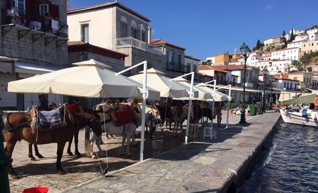 The new shelters on the Greek island of Hydra provide shade for working horses and donkeys.