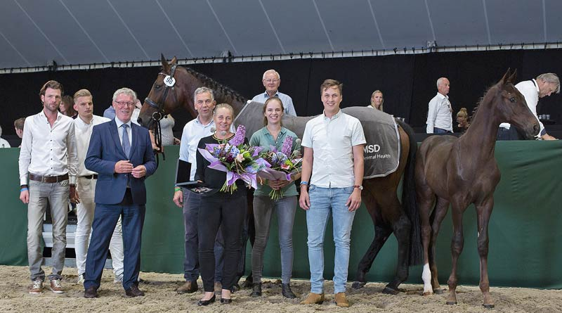 The connections of Oberyn Red Viper ZL (Blue Hors Romanov x Sir Sinclair) after he sold for €56,000 at the Borculo Elite Foal Auction in The Netherlands this week.