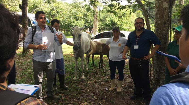 A field session at the OIE Focal Points on Animal Welfare seminar in Belem, Brazil.