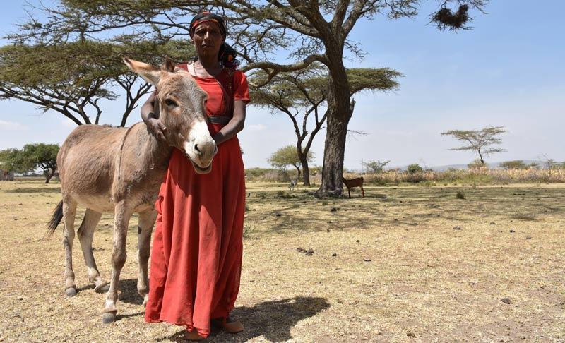Ethiopian cattle farmer Samuna with her donkey.