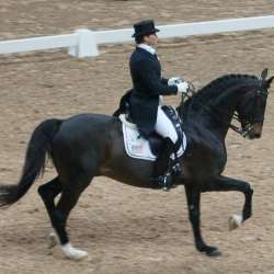 Leslie Morse, a dressage rider from the United States, with the Swedish Warmblood stallion Tip Top at the World Cup Final in 2007. Image: Fotoimage [Public domain]