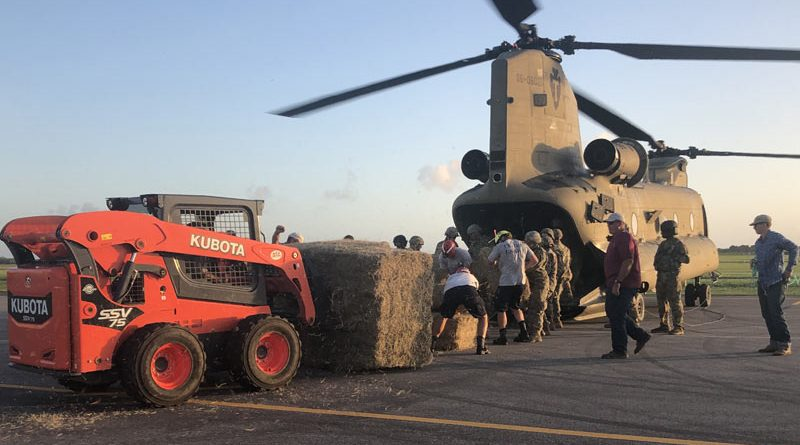 Large square hay bales have been airdropped to animals stranded by Tropical Storm Imelda in Texas.