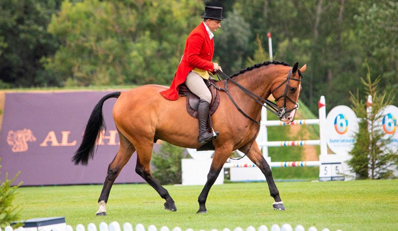 Rory Gilsenan competing at the Longines Royal International Horse Show 2019.