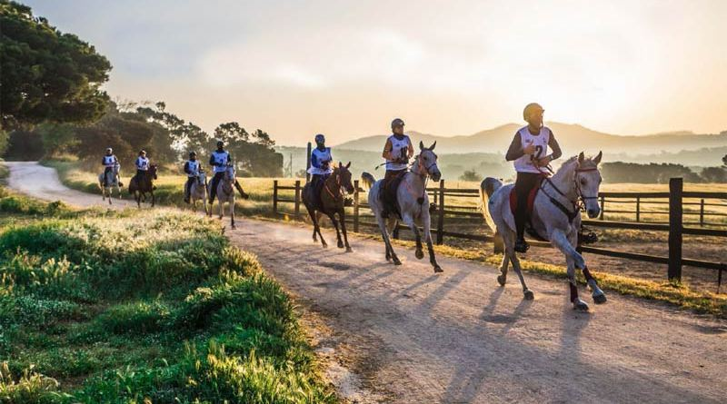 "FEI Secretary-General Sabrina Ibáñez said the FEI would be working closely with organisers to ensure the 2022 Endurance World Championships would be a ""top-notch sporting event""."