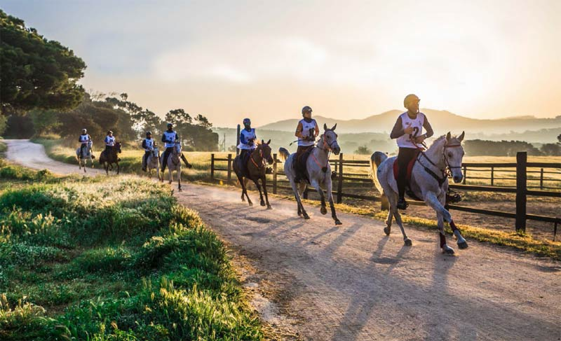 """FEI Secretary-General Sabrina Ibáñez said the FEI would be working closely with organisers to ensure the 2022 Endurance World Championships would be a """"top-notch sporting event""""."""