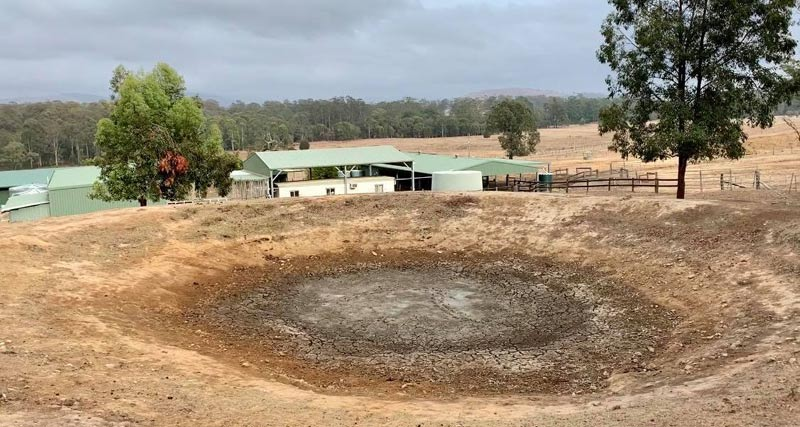 Water and feed are at a premium in Australia's New South Wales.