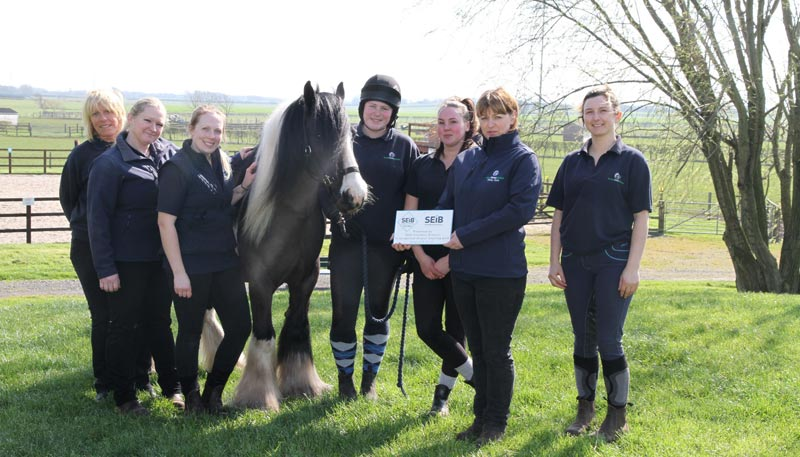 Rescue horse Frodo and the team at World Horse Welfare celebrate winning the 2019 SEIB Giving Awards.