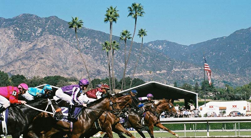 The start of the 2008 Juvenile Sprint at Santa Anita.