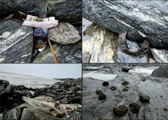 Horse-related finds from Lendbreen: a mandible; a horseshoe; a horse skull; and dung.