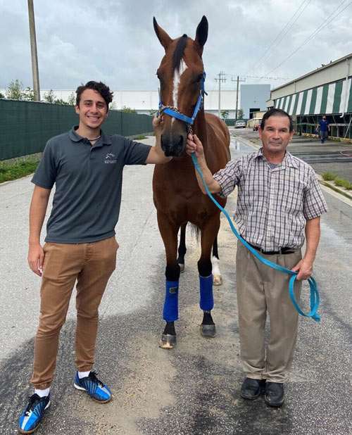 Alessandro and Antonio Sano with Bella Ciao, who recovered from a condylar fracture of her nearside foreleg.