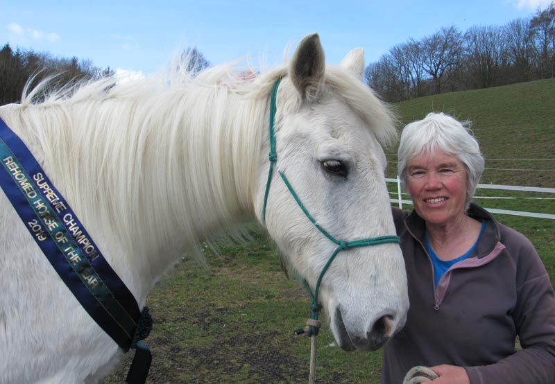 Ru -- also known as Ruith and World Horse Welfare Windy -- was named Supreme Champion of World Horse Welfare's Rehomed Horse of the Year awards last year.