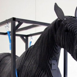 "Equine ""crash test dummy"" dedicated to making horse transport safer"